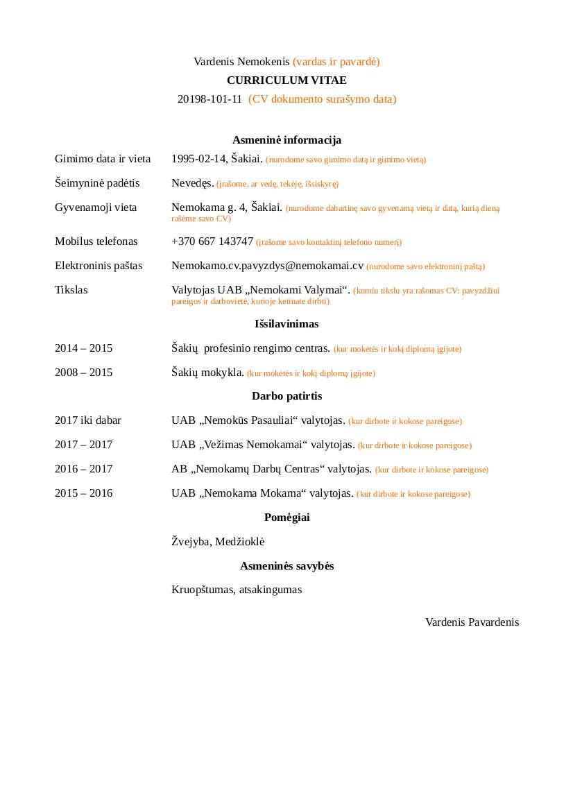 cv pavyzdys nemokamai  u2013 word doc pdf